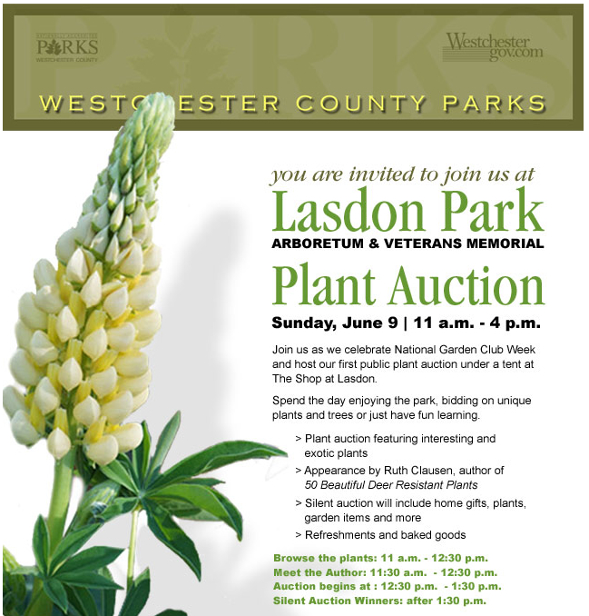 Plant auction at Lasdon….