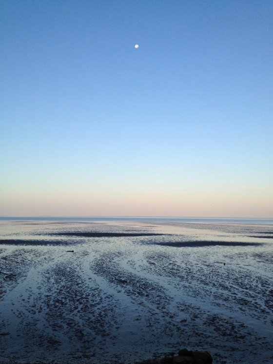 Morning moon on Cape Cod...low tide on the bay.