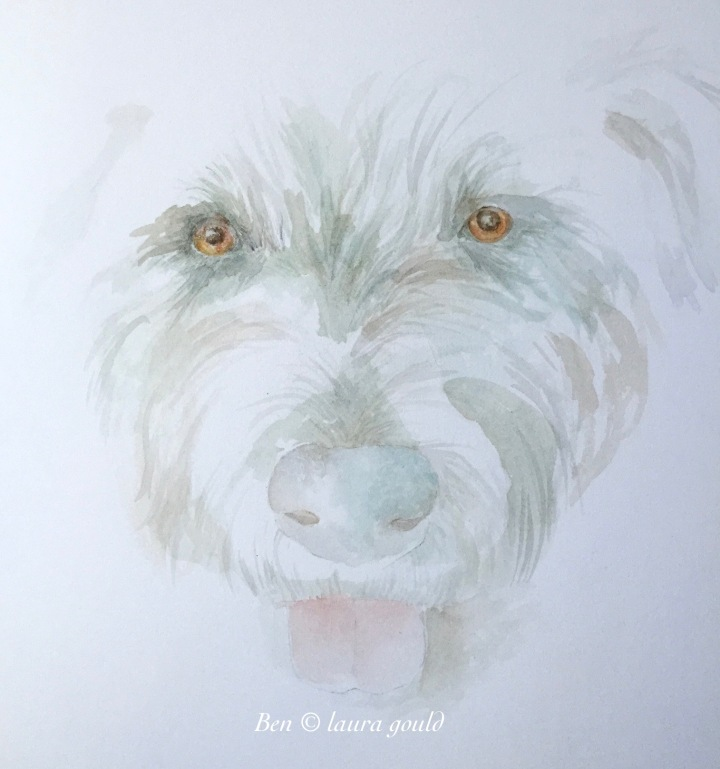 Ben watercolor ©.jpg